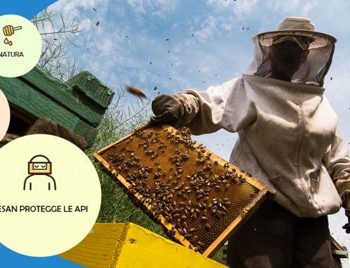 Meno pesticidi, più vita per tutti